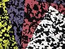 Lunasoft SL Color Plus